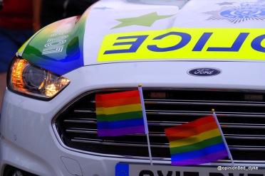 Pride Police Car