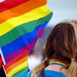 Array of rainbow flags