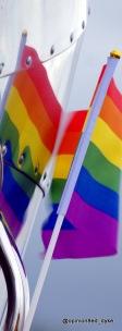 Reflection - rainbow flags on chrome